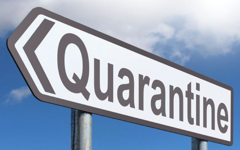 The-day-of-quarantine